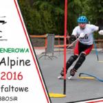 Otwarty trening Inline-Alpine w Bielsku-Białej